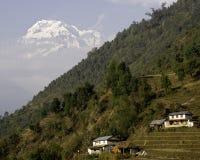 Annapurna and mountainside. Countryside along the Annapurna Base Camp Trek Royalty Free Stock Photo
