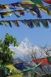 Annapurna område i Nepal Royaltyfria Bilder