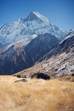 Annapurna południe, himalaje, Nepal Obraz Royalty Free