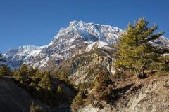 Annapurna Południowy peack w Nepal himalaje zdjęcia royalty free