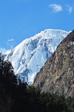 Annapurna snow  view Royalty Free Stock Photo