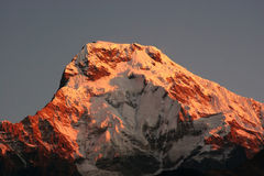 Annapurna South Stock Images