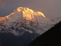 Annapurna South. Sunrise by Annapurna South in Nepal Stock Image
