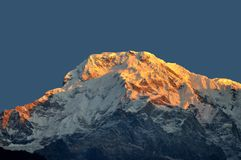 Annapurna South. Sunrise at Annapurna South. Annapurna is a section of the Himalayas in north-central Nepal royalty free stock photos