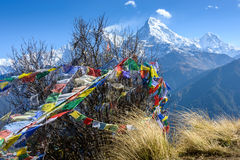 The Annapurna South, Nepal Royalty Free Stock Photo
