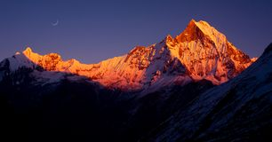 Annapurna south peak. Sunrise at Annapurna south peak, nepal royalty free stock images