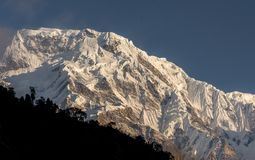 Annapurna South snowcapped mountain summit against blue sky in Annapurna Base Camp Trekking stock photos