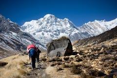 Annapurna sul, Himalaya, Nepal Fotografia de Stock Royalty Free