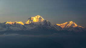 Annapurna at sunrise. Annapurna mountains at sunrise, View from Poonhill, Nepal Royalty Free Stock Photos
