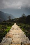 Annapurna trekking stairs Royalty Free Stock Photo