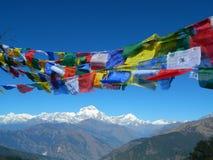 Annapurnas闪光的whises 免版税库存照片