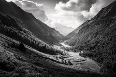 Annata alpina del paesaggio Immagini Stock