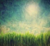 Annata, retro immagine del paesaggio della natura Fotografia Stock