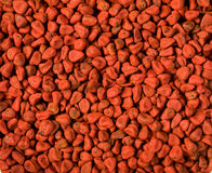 Annatto Seed Stock Photography