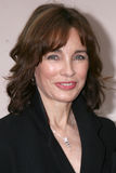 Anne Archer Royalty Free Stock Photos