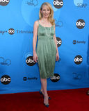 Anne Heche. ABC Television Group TCA Party Kids Space Museum Pasadena, CA July 19, 2006 royalty free stock image