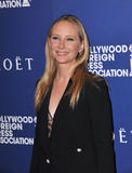 Anne Heche Royalty Free Stock Photos
