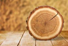 Anneau d'arbre photo stock