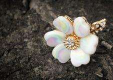 Anneau de bijoux, forme de fleur, sur l'écorce de l'arbre Photos stock