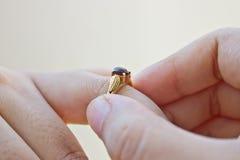 Anneau de mariage Photographie stock libre de droits