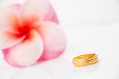 Anneau de mariage avec la fleur de Plumeria Photo stock