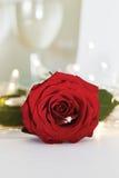 Anneau de mariage avec le diamant et les fleurs roses Photographie stock libre de droits