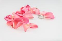 Anneau de mariage avec le pétale de rose rose sur le fond blanc Image stock