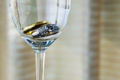 Anneau de mariage dans un champagne Photographie stock