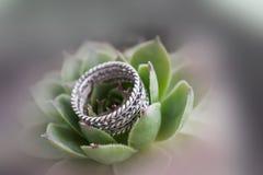 Anneau de mariage sur la fleur Photo stock