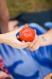 Anneau de mariage sur le fruit, grenade Photo libre de droits