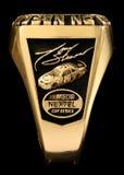 Anneau de NASCAR 2005 Photographie stock libre de droits