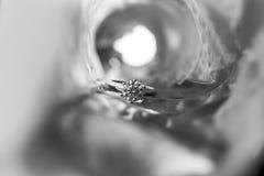 Anneau de noces de diamant Photo libre de droits