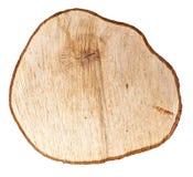 Anneau en bois Image stock