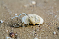 Anneau et coquillage de mariage sur la plage sablonneuse image libre de droits