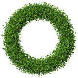 Anneau fait à partir des feuilles vertes Images libres de droits