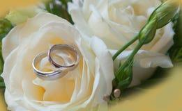 Anneaux de mariage Image libre de droits