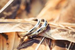 Anneaux de mariage avec des diamants dans les plumes Images stock