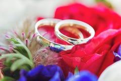 Anneaux de mariage avec des diamants en couleurs Image libre de droits