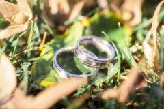 Anneaux de mariage avec des diamants sur les feuilles Images stock