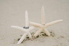 Anneaux de mariage d'étoiles de mer Photo libre de droits