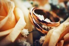 Anneaux de mariage d'or dans les roses Photographie stock libre de droits