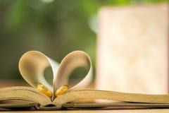 Anneaux de mariage d'or, livre de coeur, tache floue de fond Photo libre de droits