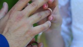 Anneaux de mariage d'usage de jeunes mariés banque de vidéos