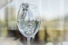 Anneaux de mariage dans Champagne Images libres de droits