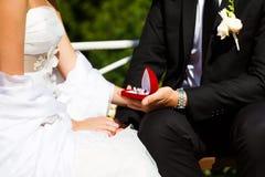 Anneaux de mariage dans des mains de marié et de jeune mariée Image libre de droits