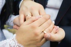 Anneaux de mariage dans les mains des hommes et des femmes Image libre de droits