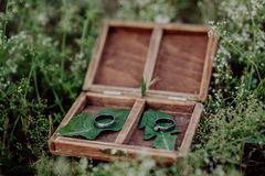 Anneaux de mariage dans une boîte en bois sur l'herbe Photographie stock