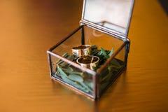 Anneaux de mariage dans une boîte en verre sur une mousse Sur une surface en bois Photo stock