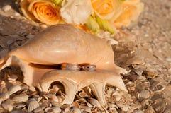 Anneaux de mariage dans une coquille sur la plage Image libre de droits