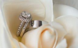 Anneaux de mariage en fleur blanche Image stock